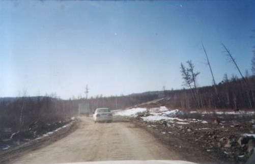 Редкие участки укатанной дороги, вокруг мертвый лес