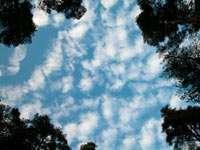 Небо после обеда