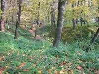 Пейзаж - овраги