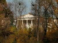 Вид на главный дом с нижней террасы