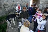 Туристы с собаками