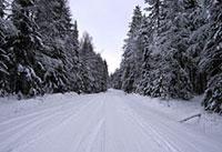 """Национальный парк """"Кенозерский"""", д.Масельга,"""