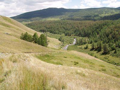 Долина Джумалы