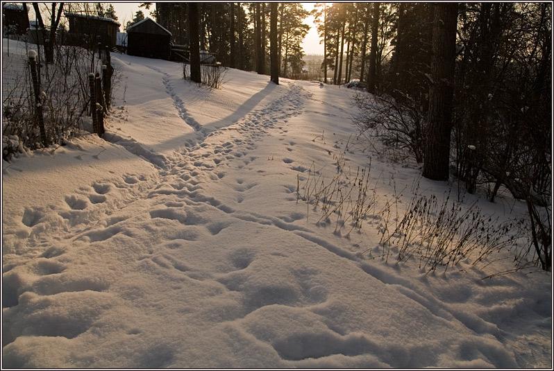 http://strusto.fotoplenka.users.photofile.ru/photo/strusto.fotoplenka/150296040/157566072.jpg