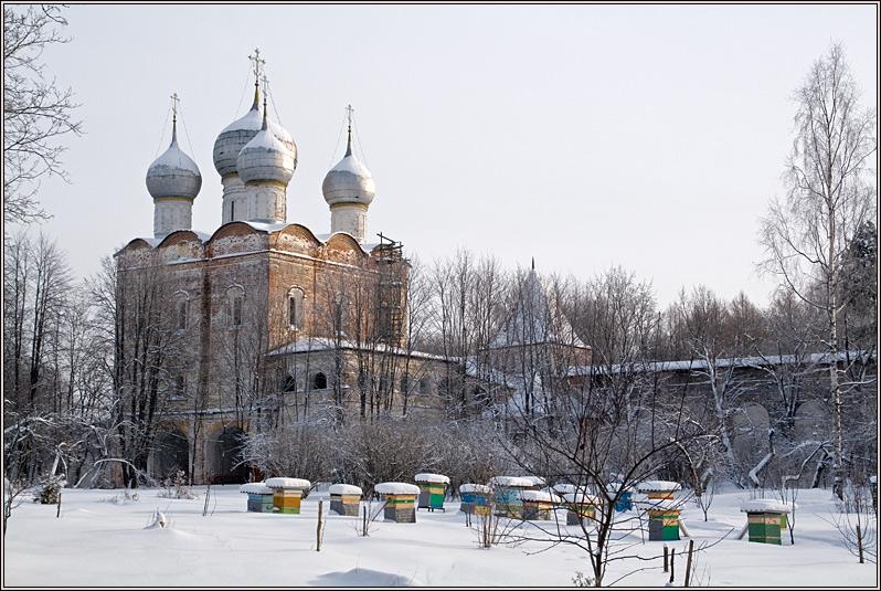 http://strusto.fotoplenka.users.photofile.ru/photo/strusto.fotoplenka/150315288/158137754.jpg