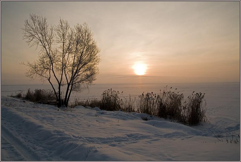 http://strusto.fotoplenka.users.photofile.ru/photo/strusto.fotoplenka/150316358/158183496.jpg