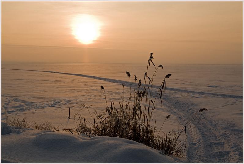 http://strusto.fotoplenka.users.photofile.ru/photo/strusto.fotoplenka/150316358/158183511.jpg
