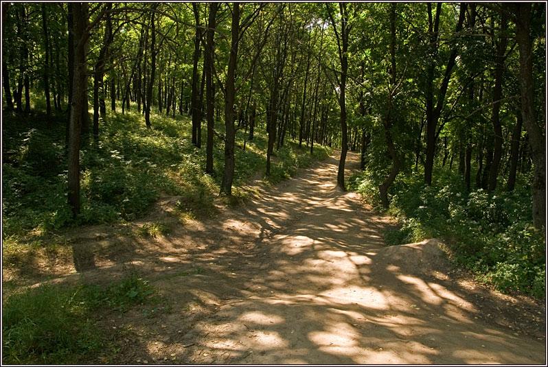 http://strusto.fotoplenka.users.photofile.ru/photo/strusto.fotoplenka/150221028/156388279.jpg