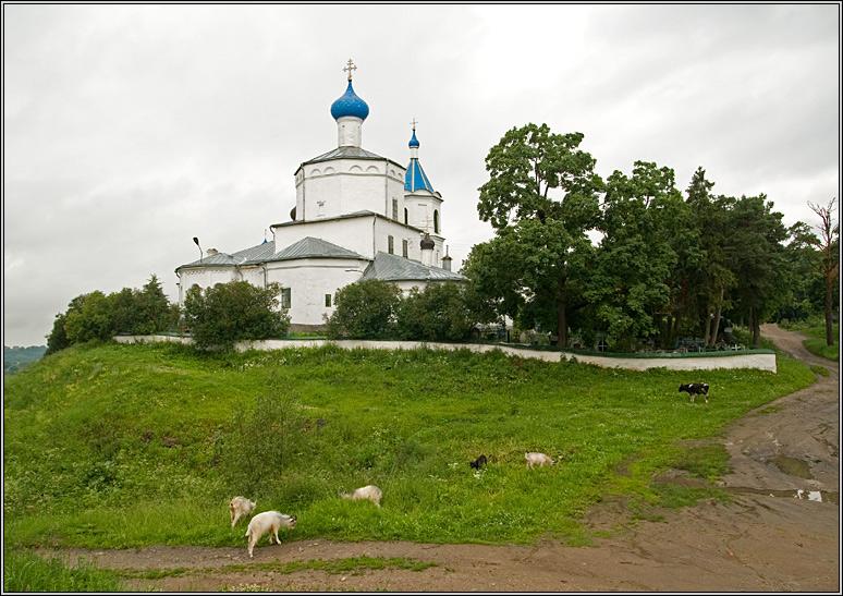 http://strusto.fotoplenka.users.photofile.ru/photo/strusto.fotoplenka/150108075/153396897.jpg