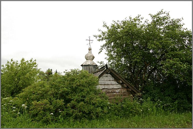 http://strusto.fotoplenka.users.photofile.ru/photo/strusto.fotoplenka/150109498/153512721.jpg