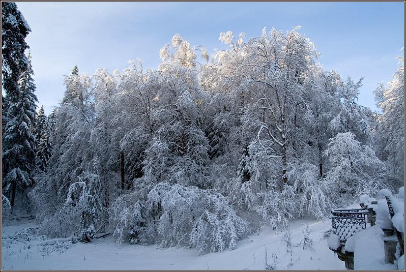 http://strusto.fotoplenka.users.photofile.ru/photo/strusto.fotoplenka/150817018/165566822.jpg