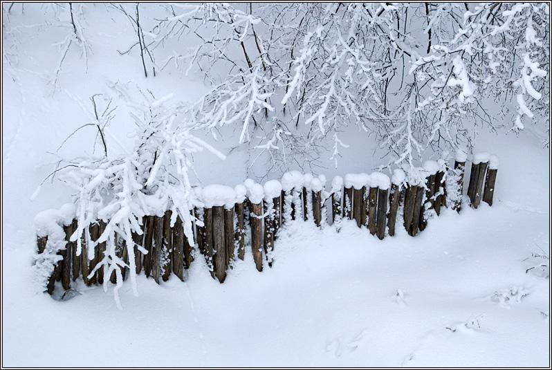 http://strusto.fotoplenka.users.photofile.ru/photo/strusto.fotoplenka/150817018/165566820.jpg