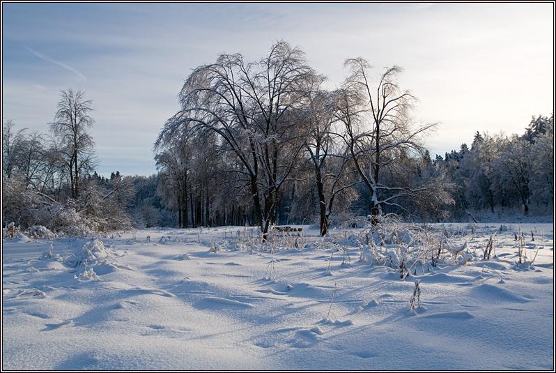 http://strusto.fotoplenka.users.photofile.ru/photo/strusto.fotoplenka/150817018/165566885.jpg