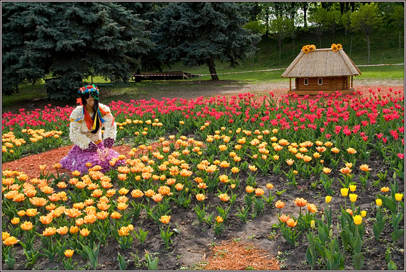 http://strusto.fotoplenka.users.photofile.ru/photo/strusto.fotoplenka/151044338/168901578.jpg