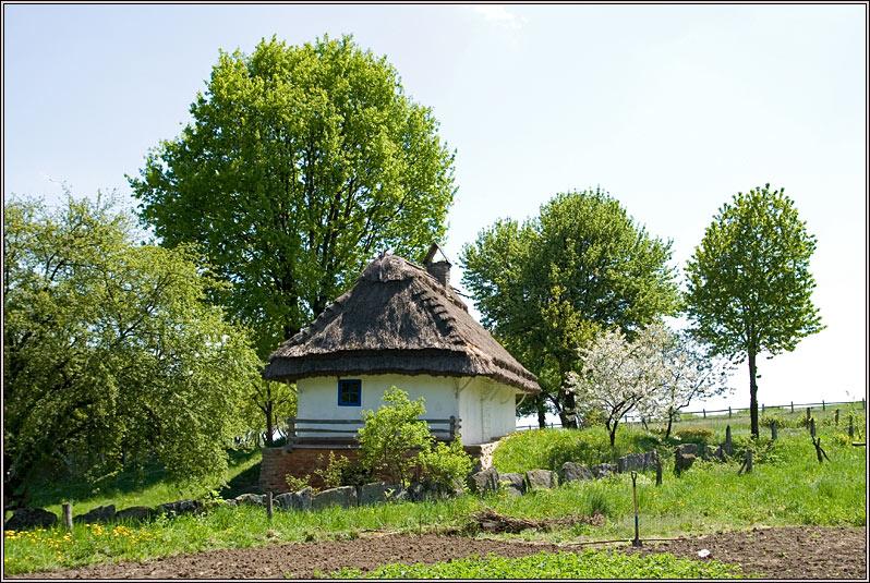 http://strusto.fotoplenka.users.photofile.ru/photo/strusto.fotoplenka/151051948/168981551.jpg