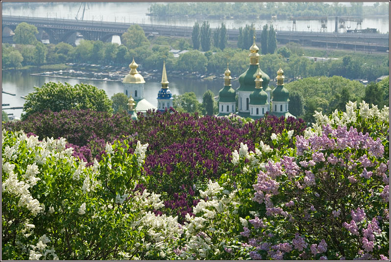 http://strusto.fotoplenka.users.photofile.ru/photo/strusto.fotoplenka/151076710/169845665.jpg