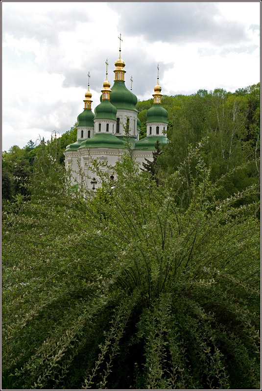 http://strusto.fotoplenka.users.photofile.ru/photo/strusto.fotoplenka/151076710/169845838.jpg