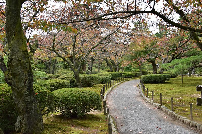Япония! Осенняя пора! Очей очарованье! Октябрь – ноябрь 2015г.