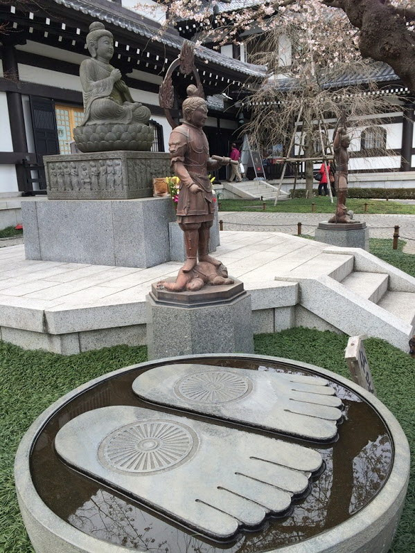 Япония: три недели цветущей сакуры (28.03-16.04.2016)