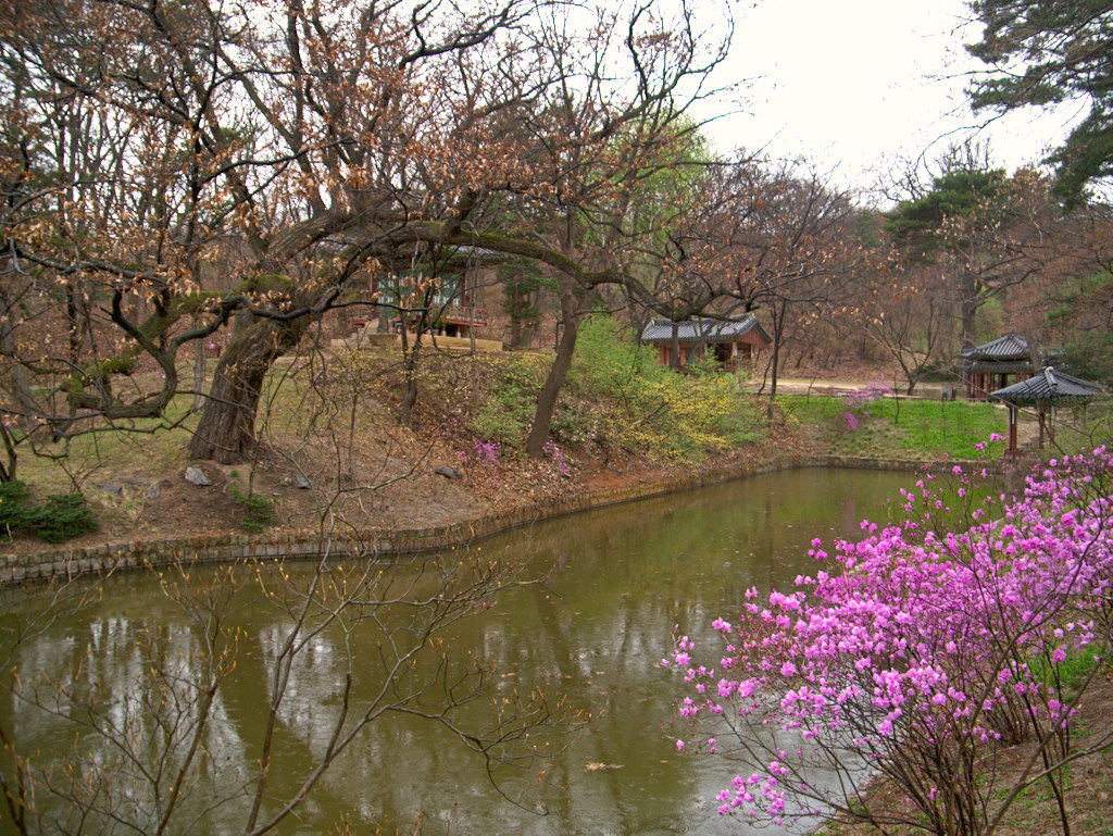 Несколько дней в Сеуле, апрель 2016