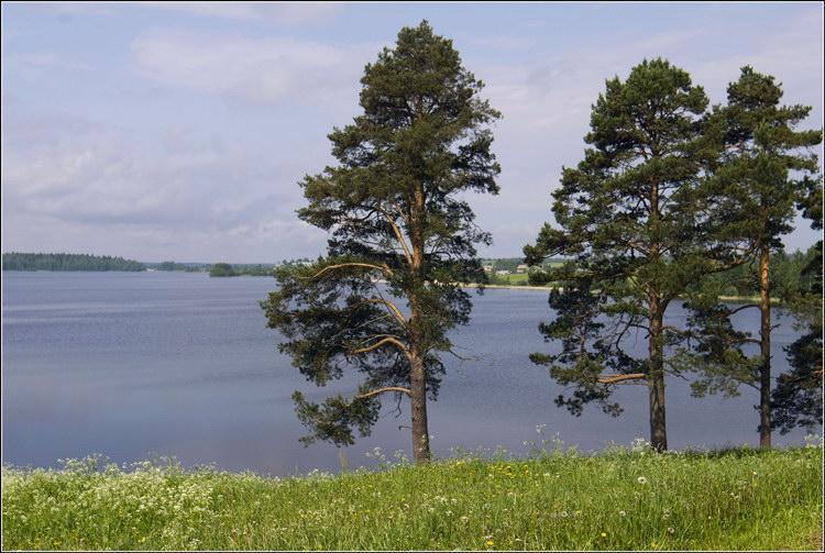 Вологда-Кириллов-Ферапонтово (июнь 2009)